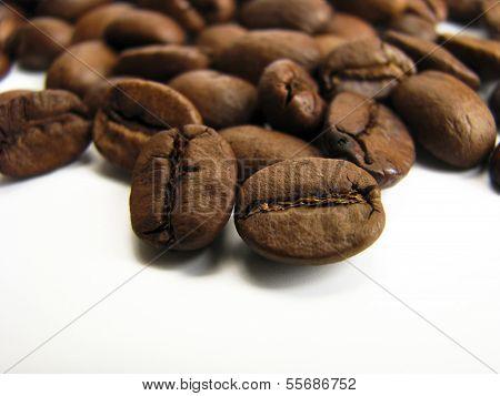 Roasted Coffee Beans Macro