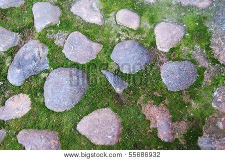 Kopfsteinpflaster im Moos-Hintergrund