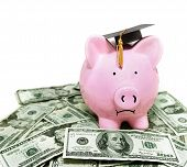 image of piggy  - frowning piggy bank with graduation cap on cash - JPG