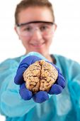 Pathologist Holding A Brain In Her Hand