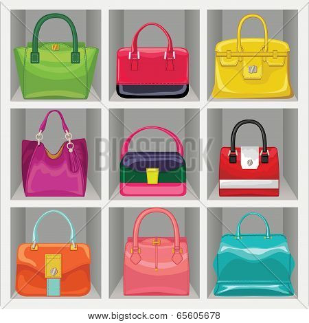 Multi-coloured Fashion Women's Handbag In The Wardrobe