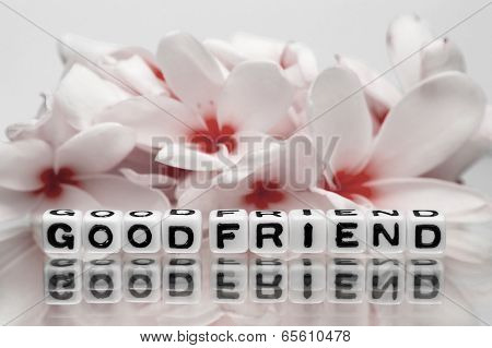 Good Friend And Red Flowers