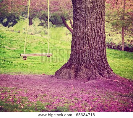 big tree with swing on a purple field
