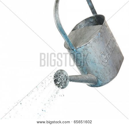 Water pouring from watering can isolated on white