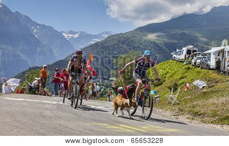 Amateur Cyclists In Pyrenees Mountains