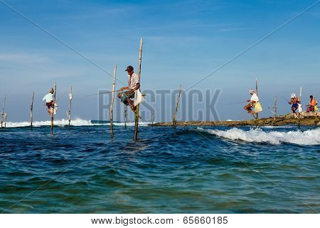 Sri Lankan Traditional Fisherman On Stick In The Indian Ocean