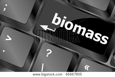 Keyboard Keys With Biomass Word Button