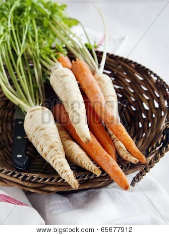 Fresh Parsley Roots And Carrots