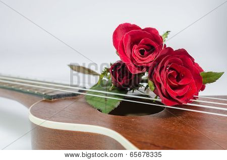 Red Rose And Ukulele