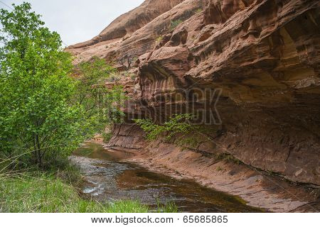 Negro Bill Trail Moab Utah