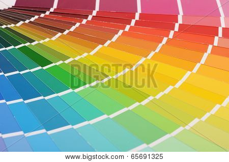 The Color Palette As A Background