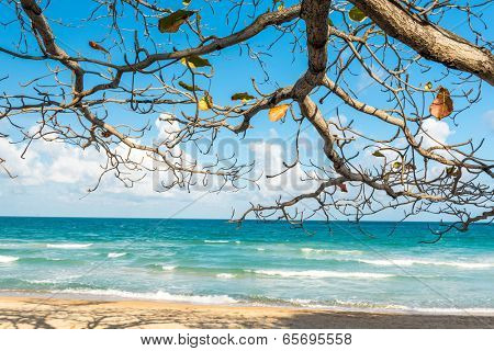 View of Chaweng Noi beach at Koh Samui Thailand