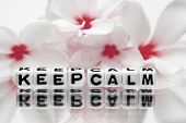 Keep Calm With Red Flowers poster