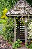 foto of gazebo  - Old wooden garden gazebo in the spring - JPG