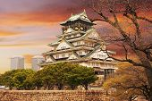 image of world-famous  - Osaka castle - JPG