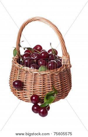 Ripe cherries in a wattled basket