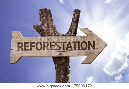 Reforestation wooden sign on a beautiful day