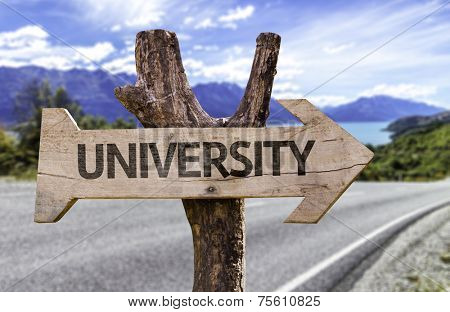 University wooden sign with a street background