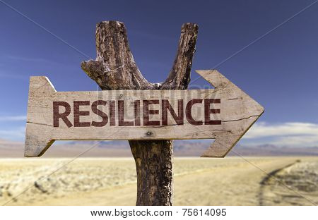 Resilience sign with a desert background