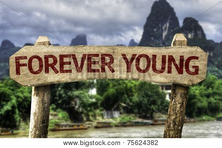 Forever Young wooden sign with a forest background