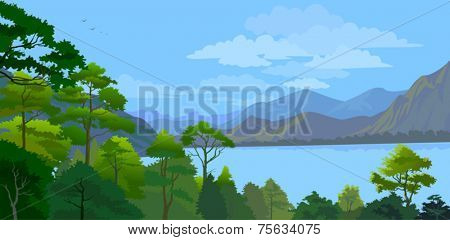 Lake, hills and forest