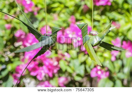 traditional philippino palm tree birds with wedding rings on natural background