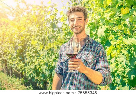 Man In A Vineyard With A Glass Of Wine