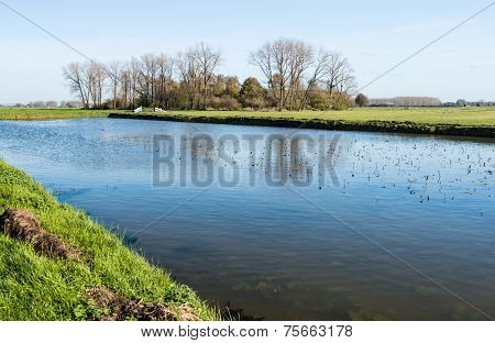 Pictureresque Polder Landscape In Autumn