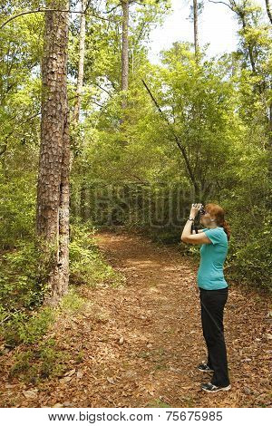 Woman With Binoculars Birdwatching On A Forest Trail
