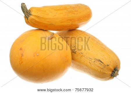Pumpkin and two zucchini