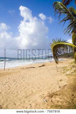 Volley Ball Court With Coconut Tree Desolate Beach Long Bag Corn Island Nicaragua