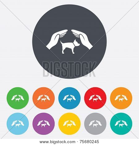 Protection of animals pets sign icon. Hands.