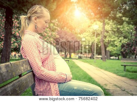 Pregnant Woman In A Park