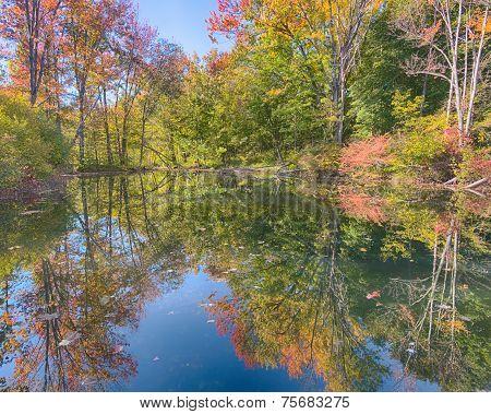 Autumn Colors, Stony Creek Metropark, MI