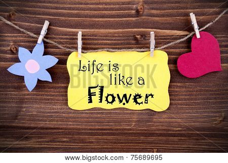 Yellow Label Saying Life Is Like A Flower