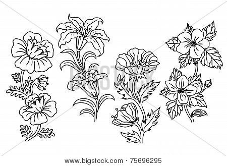 Black and white outline summer flowers