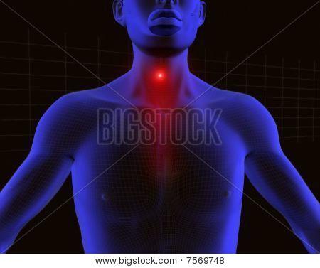 Radiografia Man Garganta
