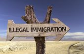 foto of deportation  - Illegal Immigration wooden sign with a desert background - JPG