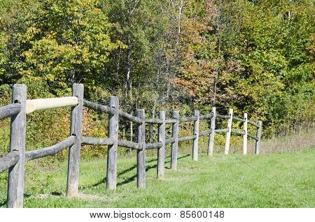 Ragged Fence