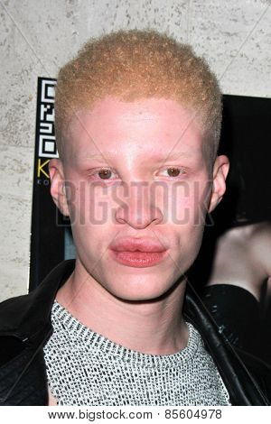 LOS ANGELES - MAR 12:  Shaun Ross at the Kode Magazine Spring 2015 Cover Party at the The Standard on March 12, 2015 in West Hollywood, CA