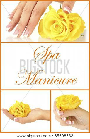 Hands with french manicure and flower isolated on white in collage