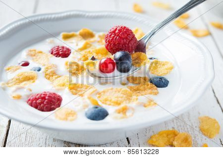 Bowl of milk with cereals and fruit