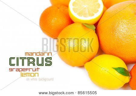 Grapefruit, tangerine, lemon, orange on a white background