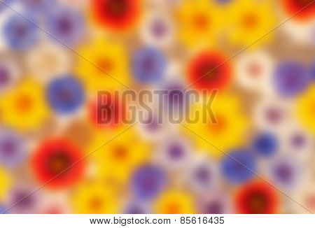 Blurred background with bright, colorful summer flowers