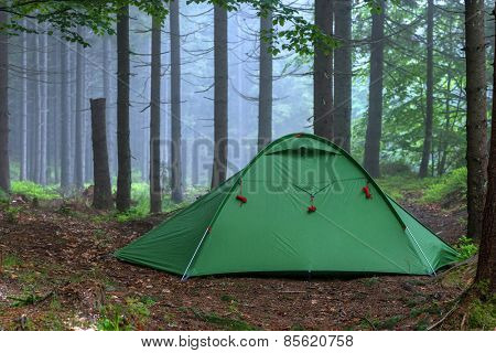 green tent on forest closeup