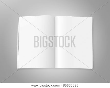 Blank Magazine Pages