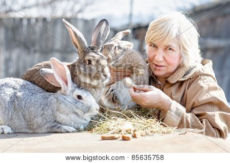 woman and rabbits