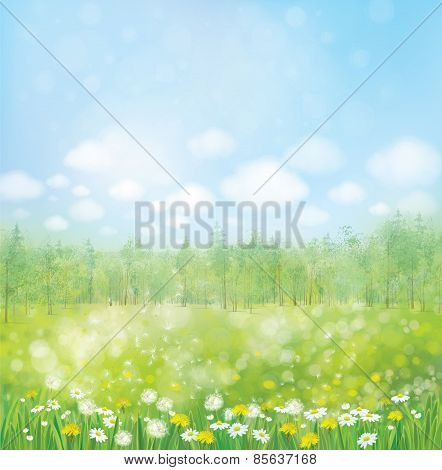 Vector Spring Blossoming Meadow With Forest Background.