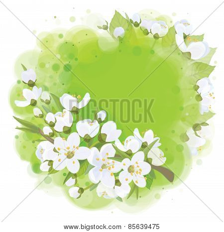Vector frame spring blossoming background.