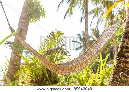 hammok on tropical background, summer vacations in tropics